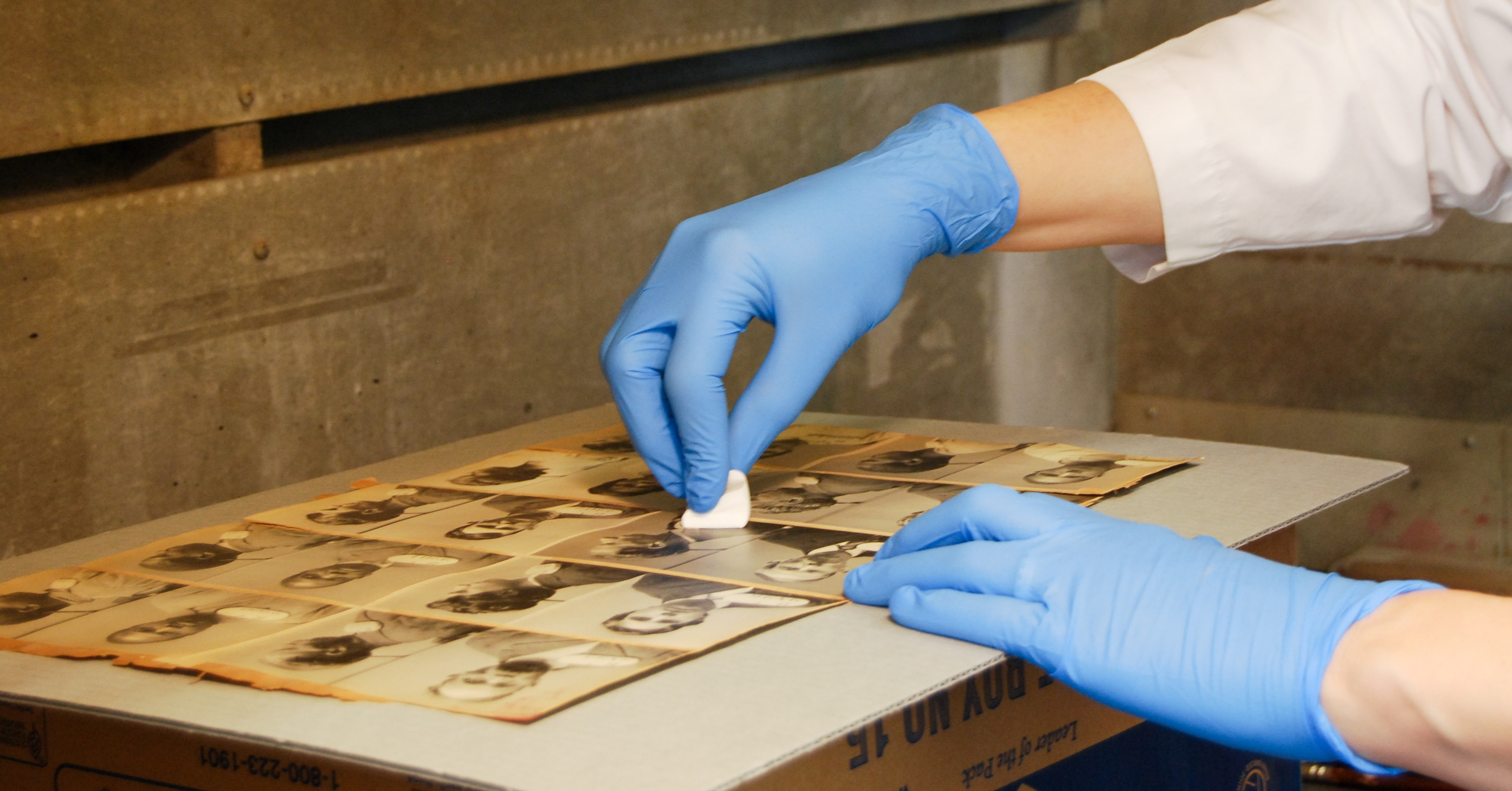 Cleaning a sheet of mugshot photographs
