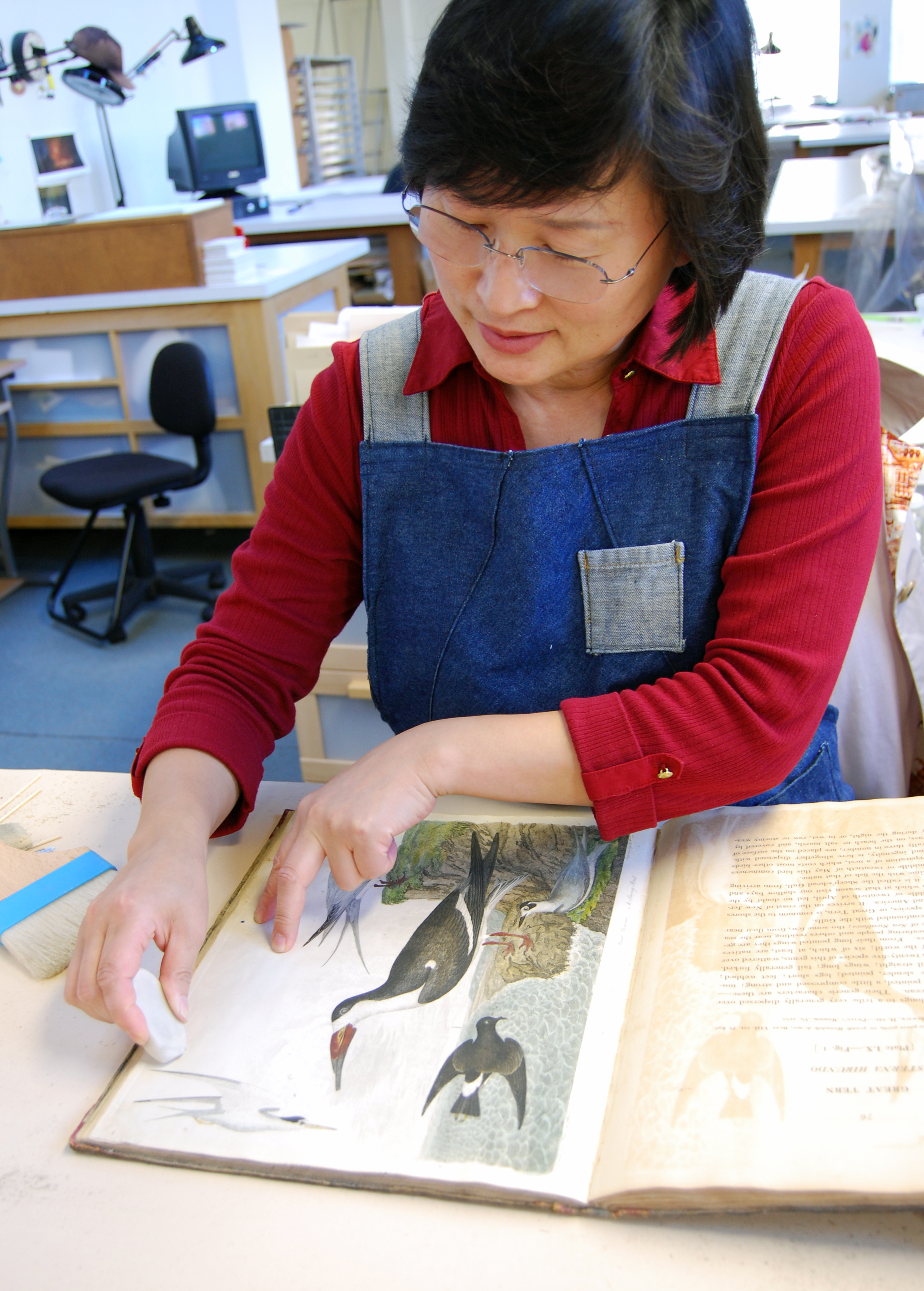 Conservator surface cleaning a page of American Ornithology