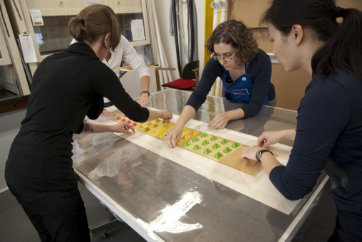 Three conservators line a sheet of candy bottoms