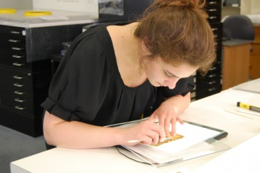 CCAHA Paper Conservation Fellow